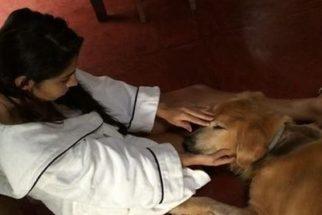 Apresentadora Regina Casé usa redes sociais para se despedir do seu cão