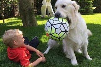 Filho do jogador Neymar mostra seu amor por cães em redes sociais