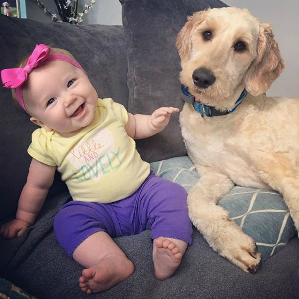 caozinho-ao-lado-de-bebe