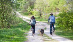 imagem-de-cao-entre-casal-andando-de-bicicleta