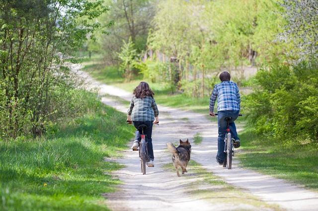 Imagem de cão entre casal andando de bicicleta