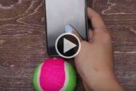 Vídeo ensina a fazer acessório para facilitar as selfies com seu dog