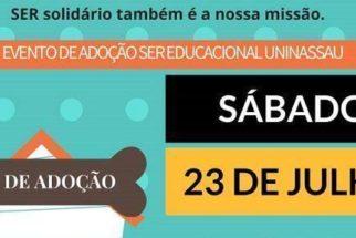 Universidade realiza evento de adoção de animais em Pernambuco