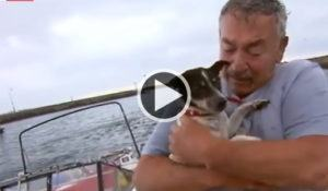 apos-acidente-de-barco-pescador-tem-reencontro-emocionante-com-seu-cao