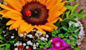 bouquet-1517426_640