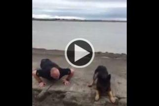 Cão imita policial fazendo flexões e vira 'hit' na internet