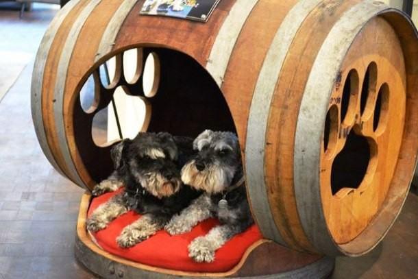 casinha-canina-com-barril