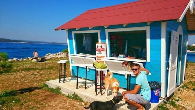 Conheça a praia que tem bar exclusivo para cachorros