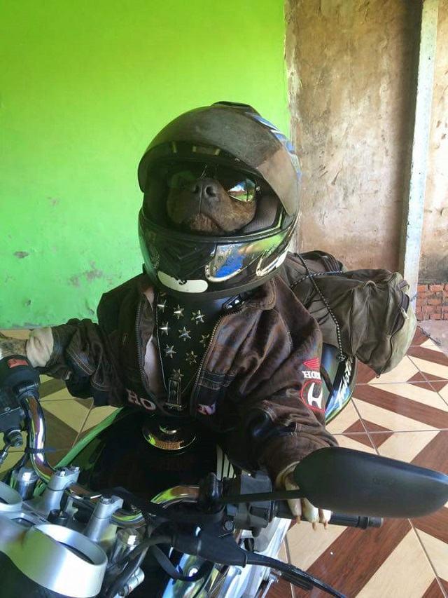 frederico-em-cima-de-moto-com-capacete