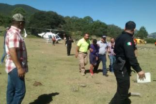 Labrador faz companhia a garoto acidentado até a chegada de resgate