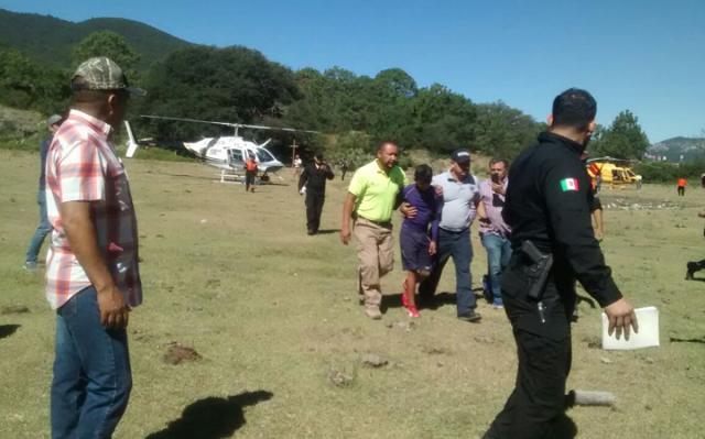 Herói: Labrador faz companhia a garoto acidentado até a chegada de resgate