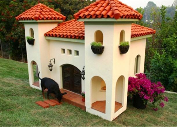 mansao-para-cachorro