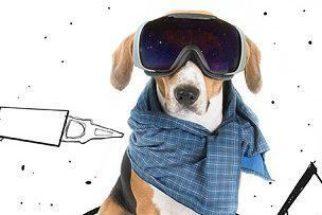Através de ilustrações, designer faz seu beagle viver muitas aventuras