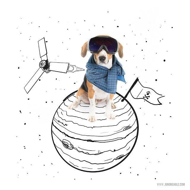 beagle-juno-como-astronauta