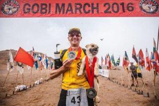 Após acompanhar maratonista por seis dias, cadela de rua é adotada