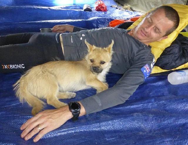 cadela-gobi-deitada-ao-lado-de-seu-novo-tutor-leonard