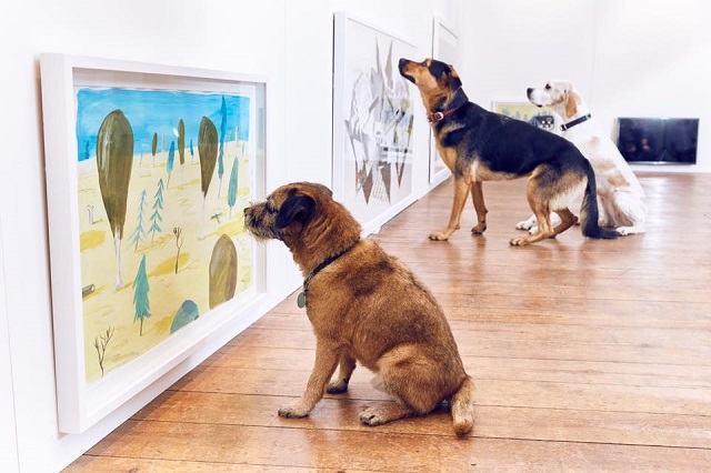 caes-olhando-quadros-em-exposição-de-arte