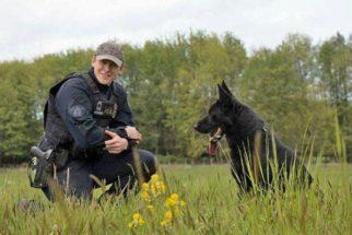 Cão policial encontra idosa que estava perdida em mata por quatro dias
