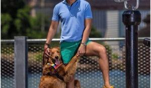 conheca-louboutina-cadelinha-que-adora-distribuir-abracos