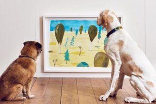 Artista cria exposição interativa voltada para cães!