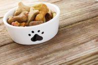 Mistura de alimentos pode levar o cão à morte