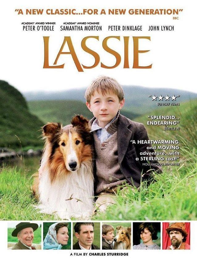 os-melhores-filmes-com-caes-que-todos-devem-assistir lassie