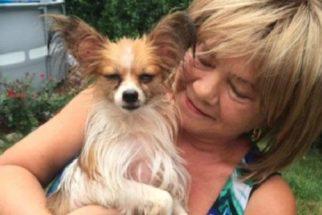 Cão é encontrado após sobreviver dois anos vivendo sozinho