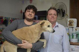 Cão agredido por idosa no Espirito Santo ganha novo lar