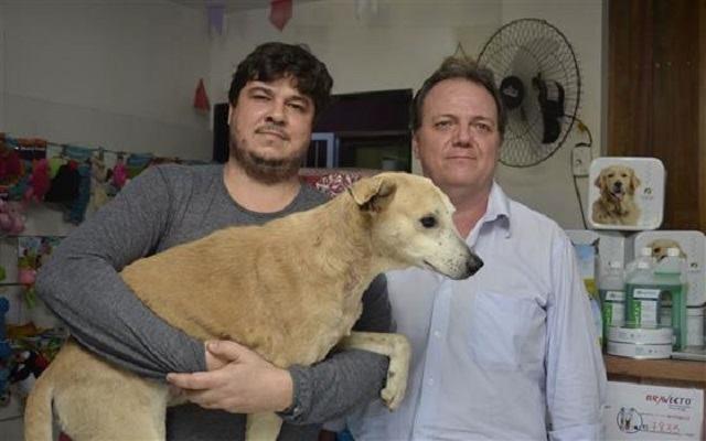 caozinho-ambrosio-aolado-de-veterinario-e-seu-novo-tutor