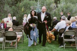 Mesmo debilitado, cão leva tutora ao altar durante casamento