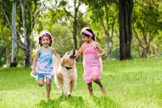 Cinoterapia: cães para tratar crianças com problemas psicológicos