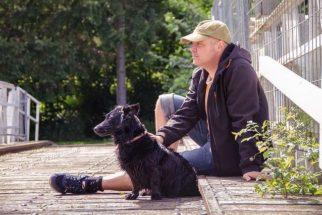 Como cuidar de um pet mesmo com um vida corrida