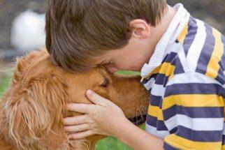 Frases celebres que retratam o amor de um cão