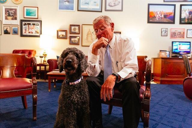 leon-o-cachorro-do-senador-jim-inhofe