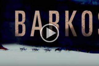 Conheça Barkos, a paródia canina da série Narcos