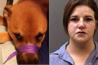 Mulher é presa após maltratar cão e compartilhar no Facebook