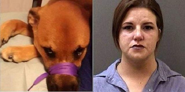 mulher-e-presa-apos-mau-tratar-seu-cachorro-e-compartilhar-no-facebook