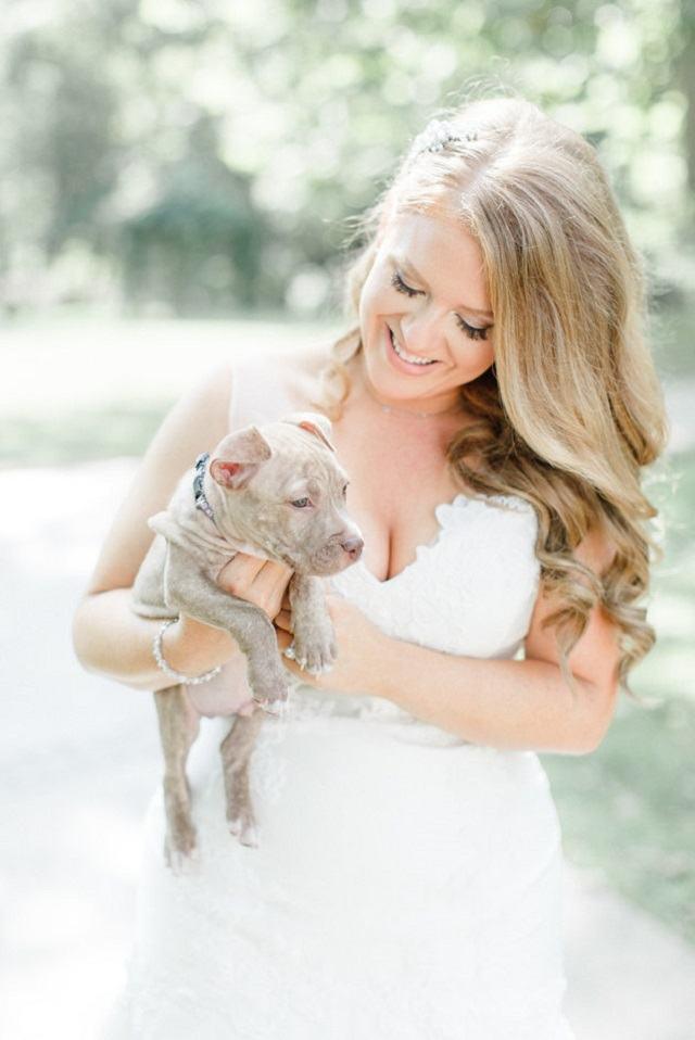 noiva-com-filhote-de-pitbull