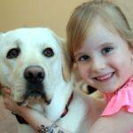 Cachorro salva garota de seis anos de crise convulsiva