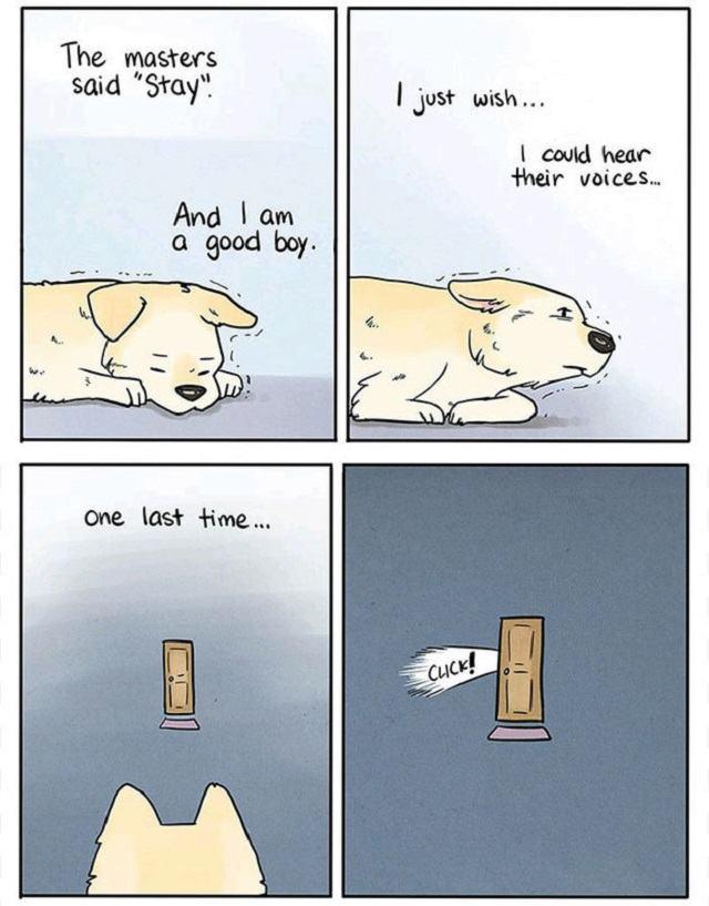 quadrinhos-cachorro-sozinho-em-casa-1