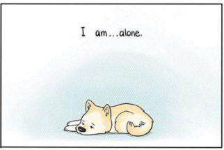 Quadrinhos retratam cães quando tutores saem de casa