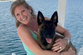 Após cair de barco, cadela nada quase 10 km para reencontrar tutores