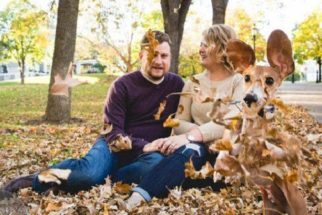 Cãozinho rouba a cena em ensaio de noivado de seus tutores