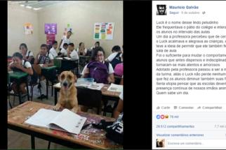 Cãozinho ganha lugar em sala de aula como aluno
