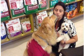 Curiosidades do trabalho em pet shop que nem todo mundo sabe