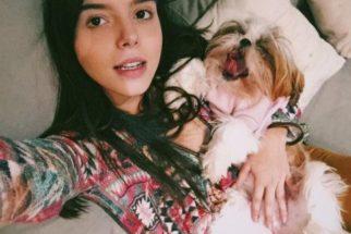 Estrelas: conheça os cãezinhos dos famosos