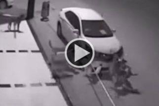 'Gangue' de cães arranca para-choque de carro e vídeo 'viraliza'
