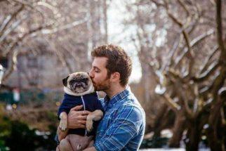 Pug e tutor fazem ensaio fotográfico como se fossem um casal