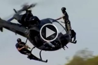 Na África, cães usam paraquedas no combate à caça ilegal
