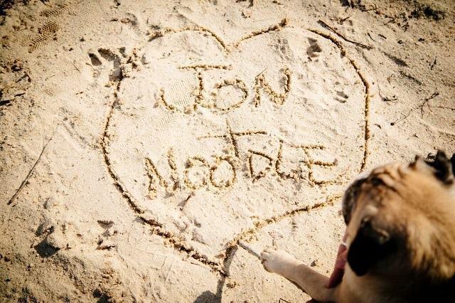 pug-escrevendo-seu-nome-e-o-de-seu-tutor-na-areia